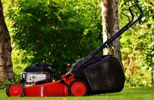 Summer Lawn Care Schedule