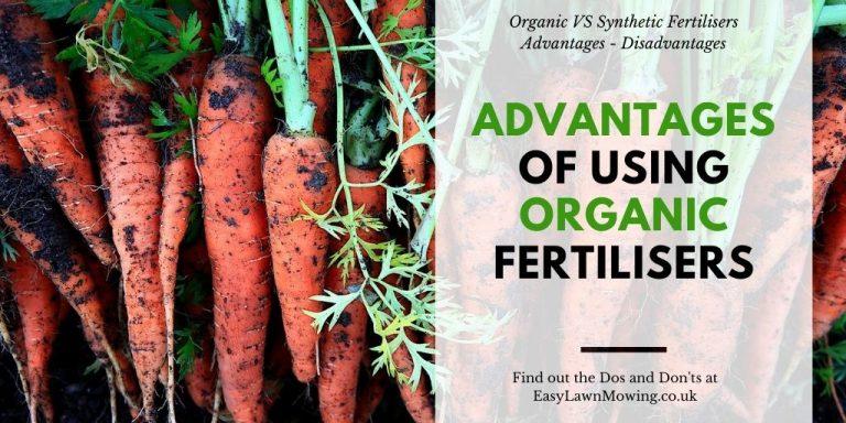 Advantages of Using Organic Fertilisers