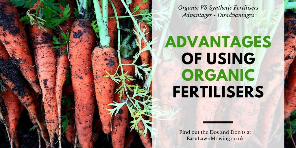 Advantages of Using Organic Fertilisers