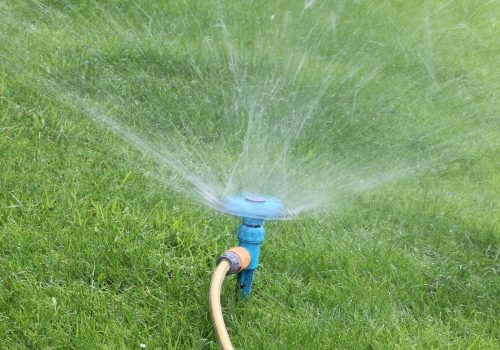 Grass Seed Watering