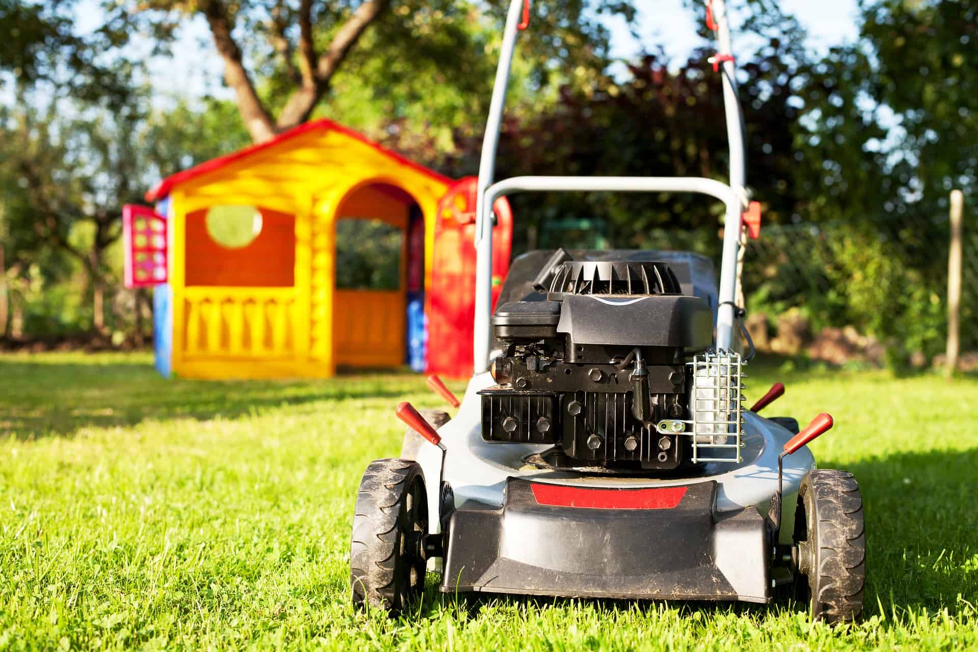 The best way to cut your grass robotic cordless lawn for How often should you mow your lawn