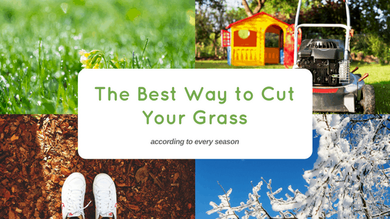 best way cut grass