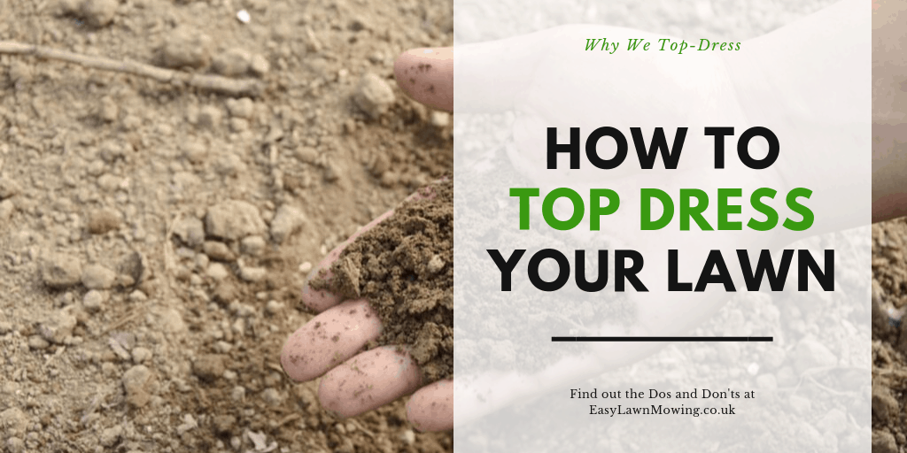 How to Top Dress Your Lawn