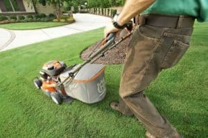 Lawn Care Hertfordshire and Bedforshire