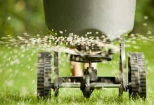 Treatment Lawn Hertfordshire