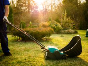 Best Lawn Scarifier & Rakes Reviews UK