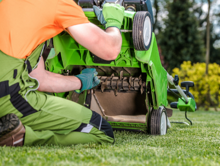 Guide To Buying A Lawn Rake or Scarifier