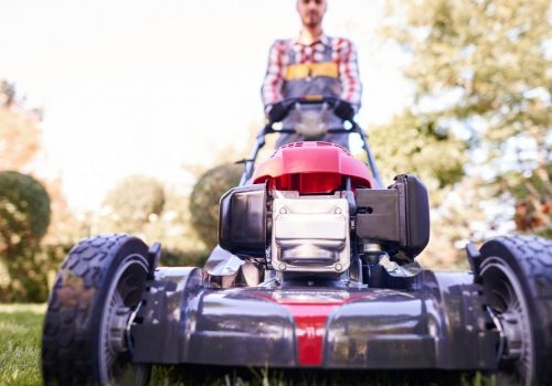 Petrol Lawn Mower Reviews