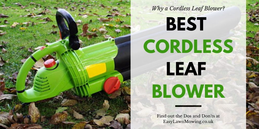 Best Cordless Cordless Leaf Blowers