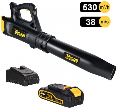 TECCPO Leaf Blower Review