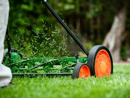 Best Push Manual Lawn Mower