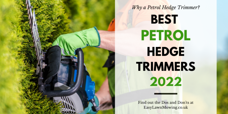 Best Petrol Hedge Trimmers
