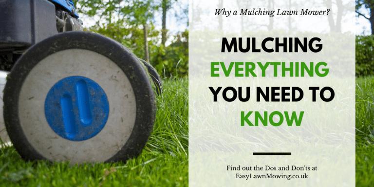 Mulching Lawn Mower Guide