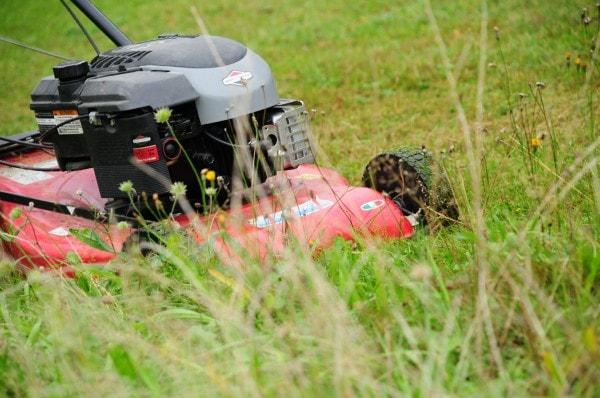 Best Mulching Lawn Mower Reviews UK