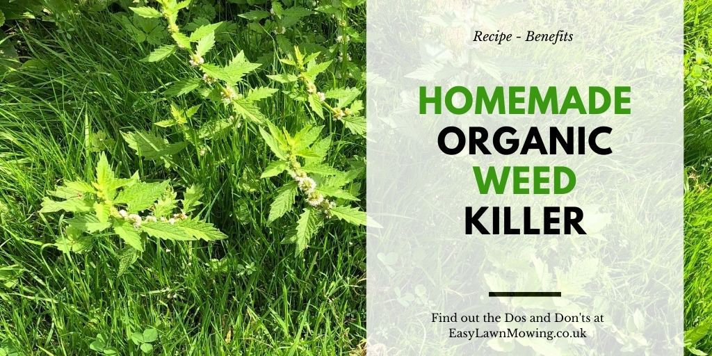 Homemade Organic Weed Killer