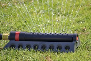 Watering Grass in the Shade