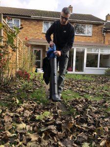 Autumn Lawn Care Advice Leaves