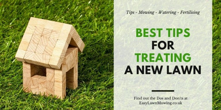 Best Tips for Treating a New Lawn