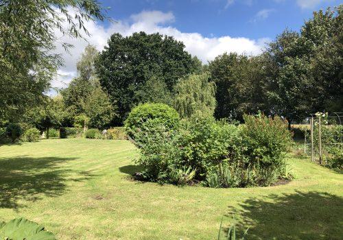 Summer Lawn Care Schedule Help
