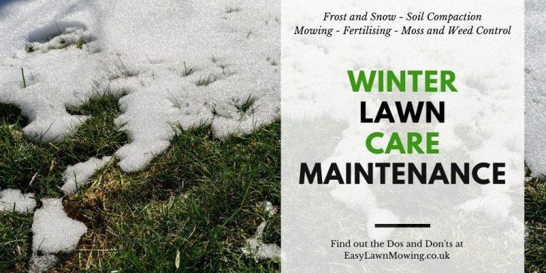 Winter Lawn Maintenance