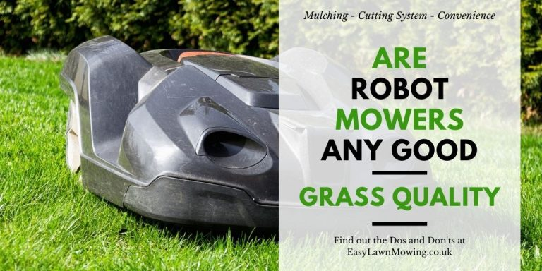Are Robot Mowers Any Good – Grass Quality
