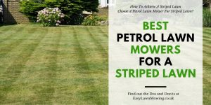 Best Petrol Lawn Mowers For A Striped Lawn