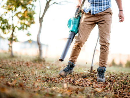 Cordless Leaf Blower Guide