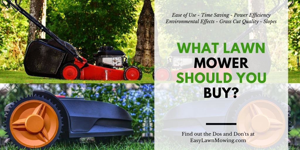What Lawn Mower Should You Buy