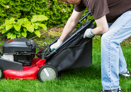 Lawn Mower For Large Lawns Bag