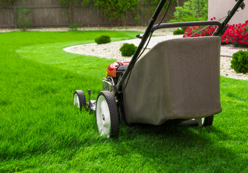 Why Choose a Petrol Mower for Large Lawns