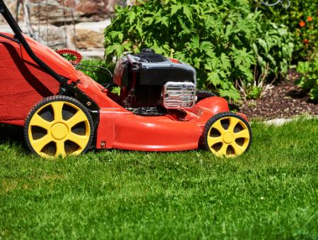 Best Petrol Mulching Lawn Mower Conclusion