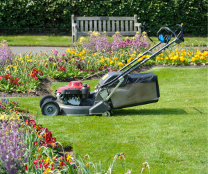 Why Purchase an Electric Start Petrol Mower