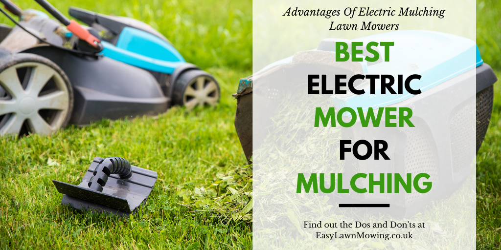 Best Electric Mower For Mulching The Lawn