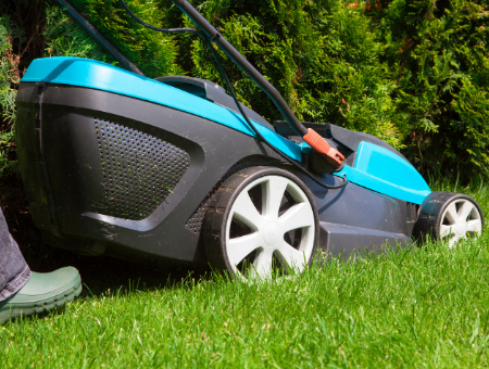 Best Electric Mower for Medium Lawns