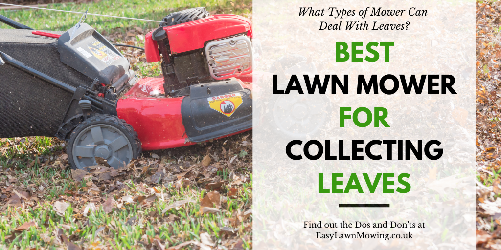 Best Lawn Mower For Collecting Leaves