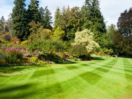 How To Achieve A Striped Lawn
