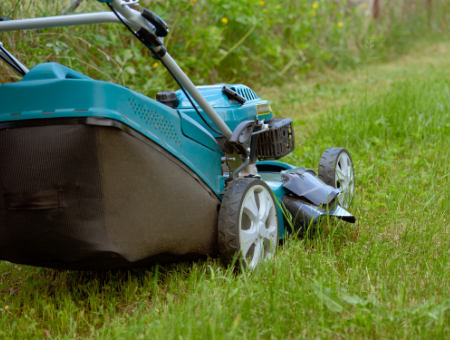 Which Is Best a Side or Rear Discharge Mower