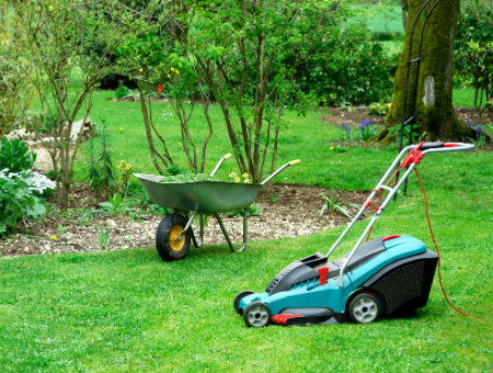 Why Striped Lawns Are So Popular