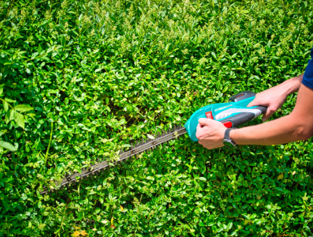 Buying A Cordless Hedge Trimmer
