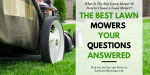 The Best Lawn Mowers – Your Questions Answered