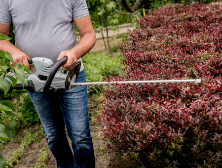 What To Look For When Buying Hedge Trimmers