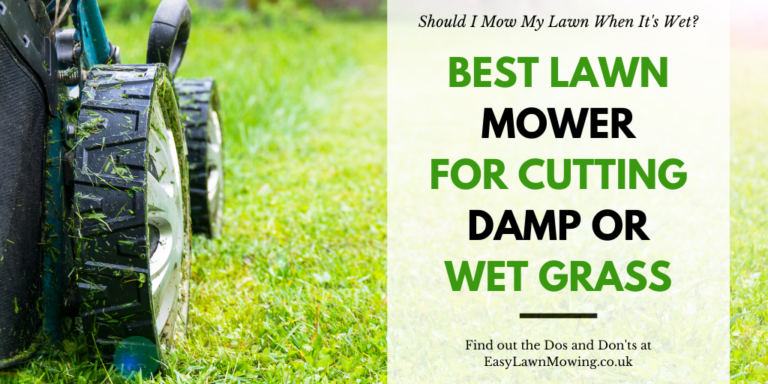 Best Lawn Mower for Cutting Damp or Wet Grass
