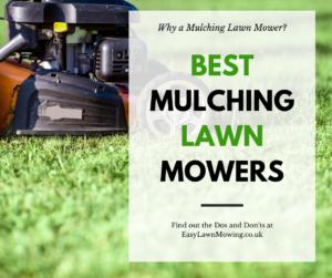 Best Mulching Lawn Mower Link