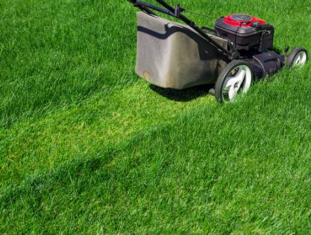 Best Petrol Lawn Mower for a Medium Gardens