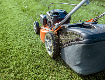 Best Type Of Lawn Mower For Cutting Wet Grass